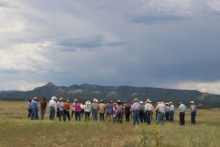 Grazing Planning and Drought a Few of the Topics at McAuliffe Ranch Open Gate