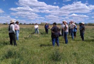 Open Gate Tour of Arriola Sunshine Farm & Cedar Mesa Ranch near Cortez, CO